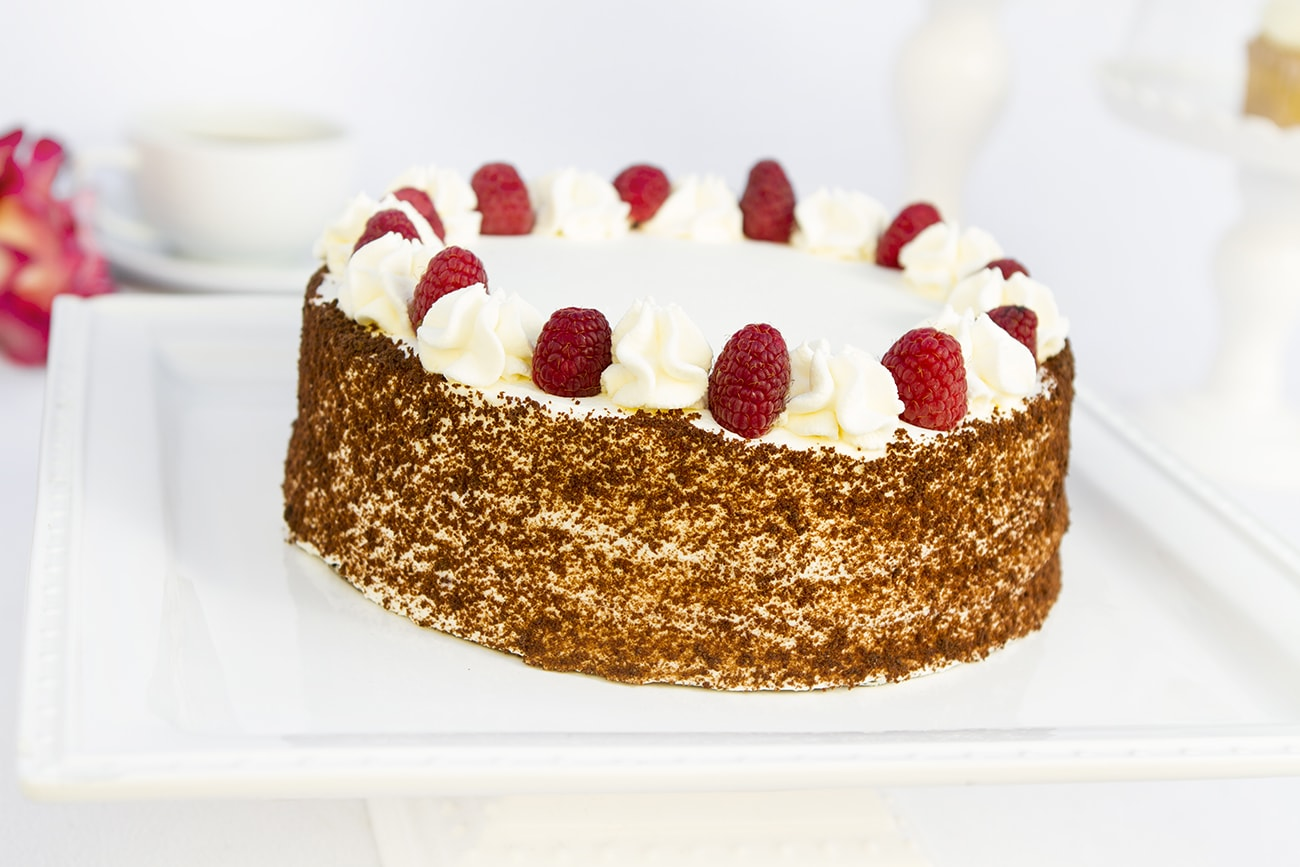 chocolate-raspberry-cake-whole-portfolio